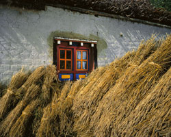 Wheat Sheaves and Window, Ghemi; Mustang, Nepal